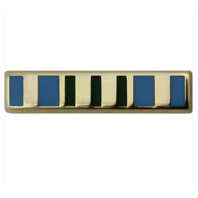 Vanguard Military Outstanding Volunteer Service Lapel Pin
