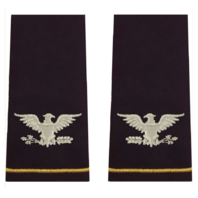 Vanguard ARMY EPAULET: COLONEL - LARGE