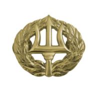 Vanguard USN US Navy Miniature Badge Command Ashore