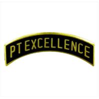 Vanguard ROTC ARC TAB: PT EXCELLENCE