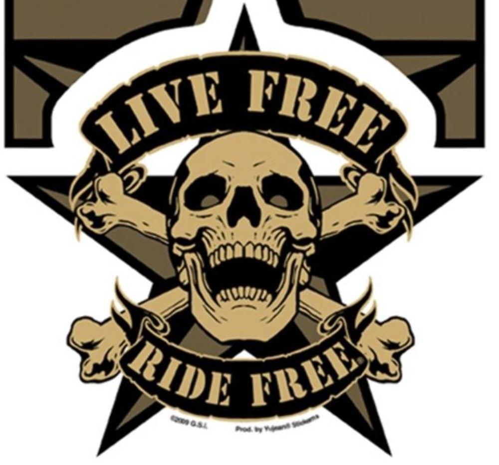 Gear Car Tattoo >> Skull Stickers For Bikes Design | www.imgkid.com - The Image Kid Has It!