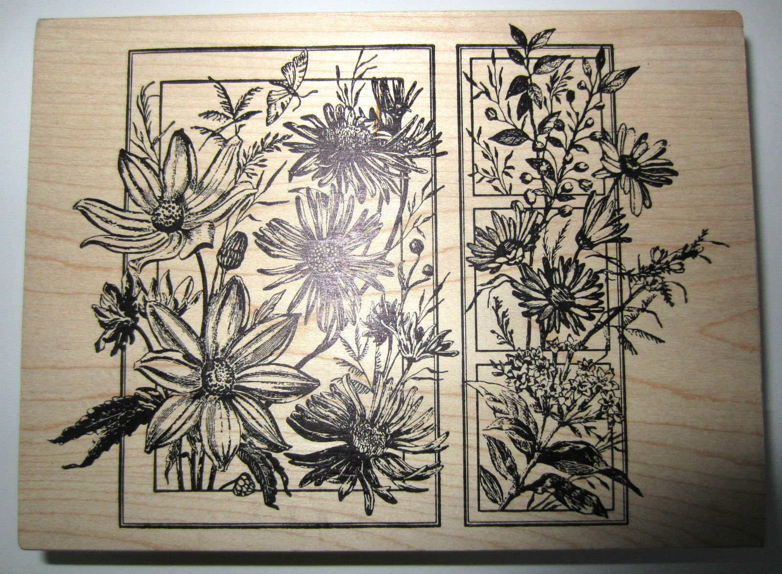 Magenta Wildflowers In Bloom Botanical Garden Wooden