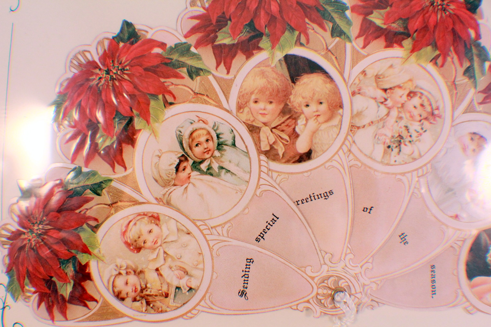 ... fan greeting card old print factory poinsettia kids brand old print