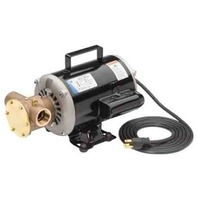 JABSCO FLEXIBLE IMPELLER PUMP, PORTABLE-120V Utility Pump