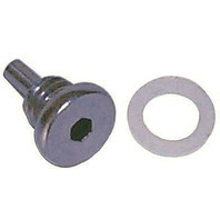 0318544 318544 OMC Evinrude Johnson Drain Screw Plug with Allen Head