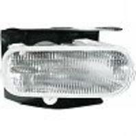 Fits 04 Ford F150 Heritage 99 F250 Light Duty Right Passenger Fog Lamp w/bracket