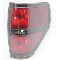 OEM F150 Right Passenger Side Tail Lamp w/Black Trim BL3Z13404AB Lens Crack