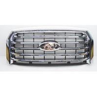 OEM Ford F-150 XLT Pickup Center Front Grille 5 Chrome Bars w/o Emblem-Crack