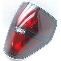 OEM Ford F150 Right Passenger Side Tail Lamp Lens Chips
