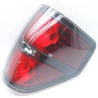 OEM Ford F150 Right Passenger Side Tail Lamp Mark Inside Lens