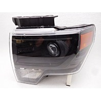 OEM Ford F-150 Left Driver Bare Xenon Headlight Head Lamp-Haze/Lens Visual
