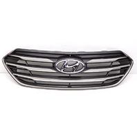 OEM Hyundai Sante Fe Sport Matte Silver Front Upper Grille-Scratches