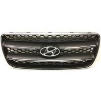 OEM Hyundai Santa Fe Grille Scratches 86560-2B020