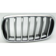 OEM BMW X6 Left Grille Scratches 51137373697