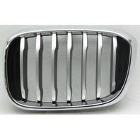 OEM BMW X3 Left Side Grille Insert 51137478669-04 Chrome Trim Titanium Insert