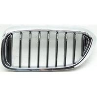 OEM BMW 530i Left Driver Side Grille Scratch 51137390863