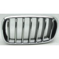 OEM BMW X5 Left Driver Side Grille 51137316061