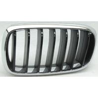 OEM BMW X6 Left Driver Side Grille 51137373689