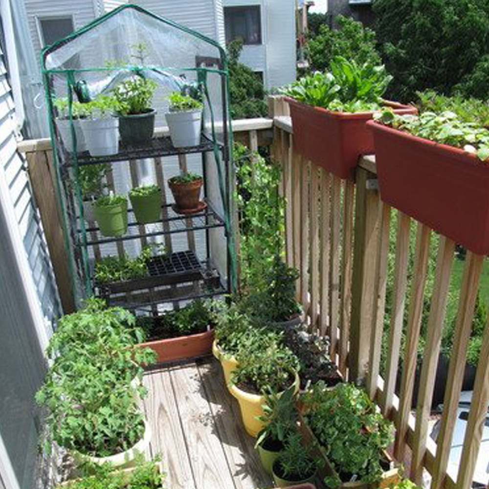 Portable Greenhouse For Patio : Tier mini greenhouse portable deck patio with