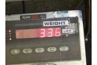 Lincoln IdealArc  MIG Welder  1Ph, 208/230V, SP- 200