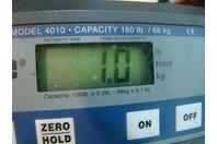 """(92) 2"""" Buna Tri-Clamp Gasket Tri-Clover 40MPU-200"""