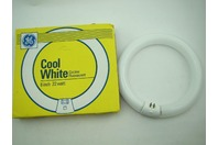 "GE Cool White Circular Fluorescent Bulb 8"" 22W"