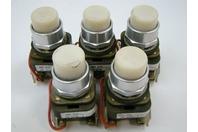 (5) Allen Bradley AC/DC 24v Push Buttons 800T-Qt24