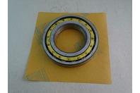 SKF Roller Bearings  , N218