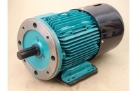 Brook Crompton  3HP Brake Motor Volts 230/460, RPM 1760 , WP-DA182TSH-M4