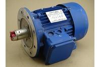 Motek  1.5 kW(2HP) Electric Motor 400v 50Hz, ED901000518