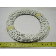 National Loop P-NL22-18/100 6'x22' 100' Leads  18GA Sawcut Loop Wire Sensor Wire