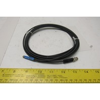 Sick RZT6-03ZRS-KRD 10-30V AC/DC Position Sensor Reed Switch