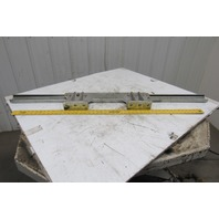 """Rollon TLC63 50mm Cam Guided Rail Linear Bearing With Truck Attachment 55"""" Long"""