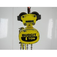 Budgit 11588157 Pneumatic Air Chain Hoist 1 Ton  14' Lift 8FPM W/Push Trolley