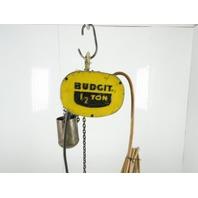 Budgit 309826-32 1/2 Ton Electric Chain Hoist 230V 3 Phase 16FPM 10' Lift