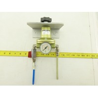 "DRF.31 Pneumatic Pressure Precision Regulator 1/4"" NPT 16 Bar Max"