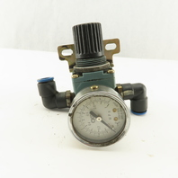 "CKD B2019-2C-P 1/4"" Airline Pressure  Regulator"