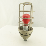 Rab Lighting 1210 Die-Cast Aluminum Vaporproof Caged Light Fixture 120V