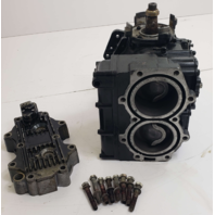 1987-88 Force Cylinder Block Powerhead FA658010 C# 658010 50 HP FOR PARTS/REPAIR