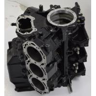 439765 Evinrude 1999-2000 Big-Bore Looper Ficht Powerhead 200 225 250 HP V6