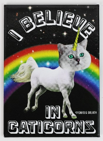 I Believe in Caticorns FRIDGE MAGNET Cat Humor Funny Godzilla Cat G23