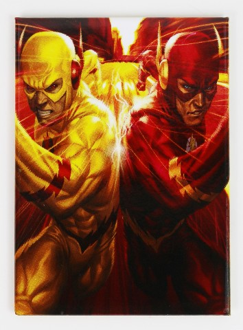 The Flash Flashpoint Fridge Magnet Reverse Flash Dc Comics J23