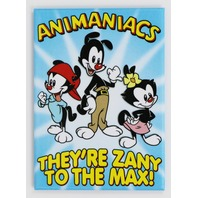 Animaniacs Cartoon FRIDGE MAGNET Yakko Wakko Dot Tiny Toons J29