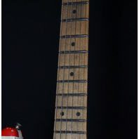 EVH Stripe Series Frankie Frankenstein Relic R/B/W Guitar (In Stock)EVH2103649