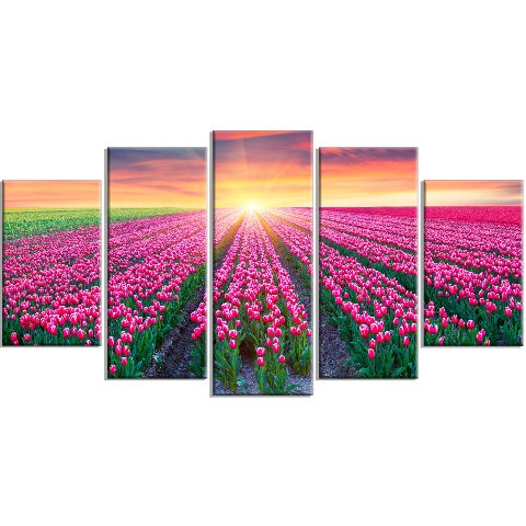 Design Art Blooming Tulips At Sunrise - Photo Metal Wall Art - 60x32-5 Panels