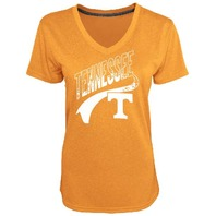 NCAA Champion Women's Heather Jersey V-Neck T-Shirt