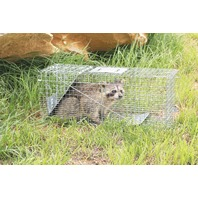 Havahart 1079 Large 1-Door Humane Animal Trap