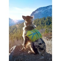 Crest Stone Explore Dog Backpack Hiking Gear For Dogs Large/X-Large