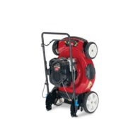 Recycler 22 in. SmartStow Briggs and Stratton High Wheel Gas Push Mower