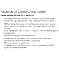 """Flanders Precisionaire 82655 Naturalaire Air Cleaner, 19"""" X 20"""" X 4""""/2 Pack"""